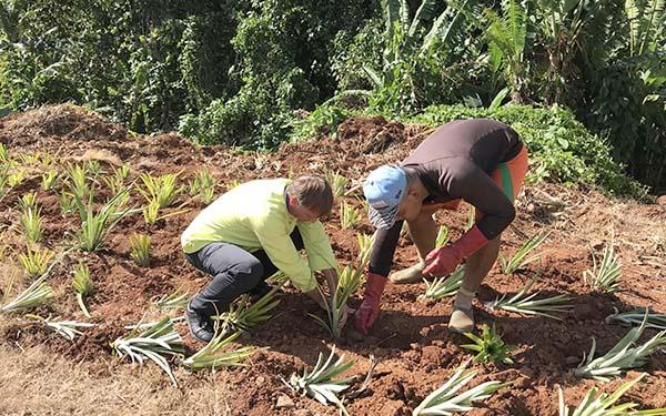 Tahiti - Frederic Jaunault MOF Primeur Fruits Legumes
