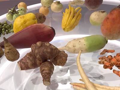 Bien cuisiner les l gumes d hiver fr d ric jaunault sur - Legumes d hiver a cuisiner ...
