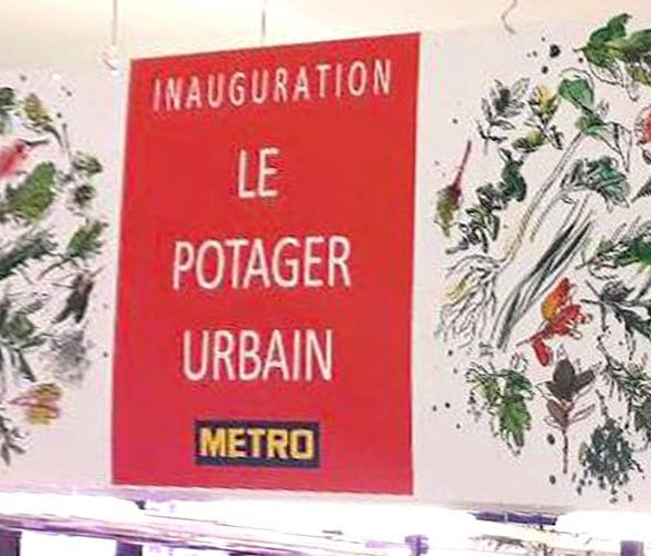 Header Inauguration Le Potager Urbain - Frederic Jaunault Fruits Légumes