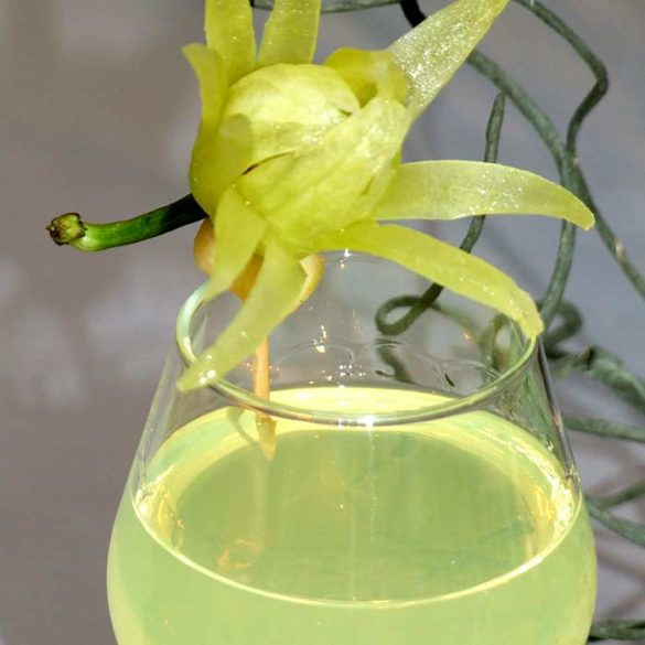 Sculpture Formation pour Barman Décor verre - Frederic Jaunault MOF primeur Fruits Légumes